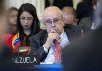 """Tarre Briceño presentó el """"Plan País"""" ante el Consejo Permanente de la OEA"""